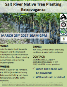 SR Native Tree Planting