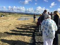 Doreen Hansen, HCRCD, leads a tour group at the confluence of Francis Creek and the Salt River.